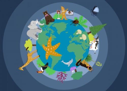 2020 Plant & Animal Sciences SMRT Grant Program: Explore Earth's Biodiversity 正式展開!